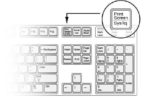 Как сделать скриншот несколькими способами